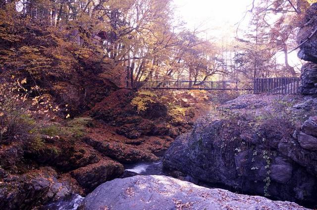 多留姫の滝